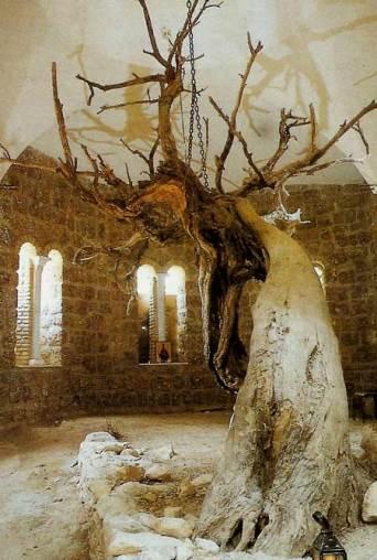 manastirea-sfantul-efrem-11